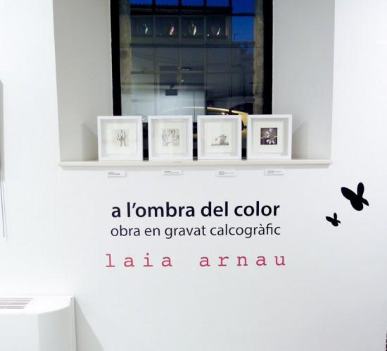 Exposición Laia Arnau - A l'ombra del color